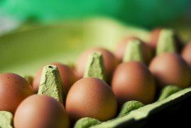 food-eggs-box