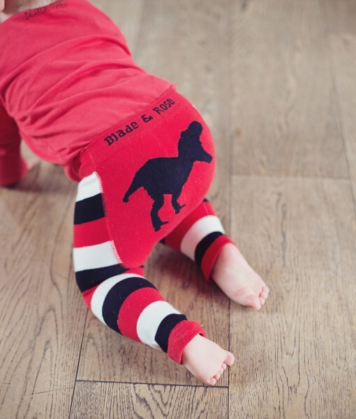 Boys T-Rex leggings by Blade and Rose